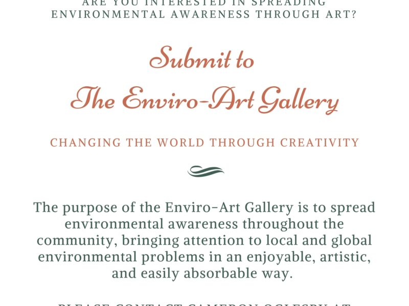 ARE YOU INTERESTED IN SPREADING ENVIRONMENTAL AWARENESS THROUGH ART_ (2)
